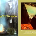 201203Koh-Sugimoto_Omega-Tornado